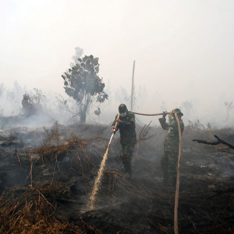 Water sharing in Indonesia key to smothering transboundary haze