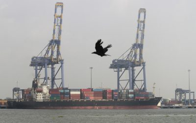 A crow flies past a container ship docked at a port in Vallarpadam in the southern Indian city of Kochi, 11 December 2013 (Photo: Reuters/Sivaram V).