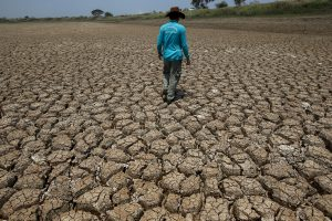 A man walks on a dried up swamp in Ayutthaya Thailand, 9 April 2016 (Photo: Reuters/Athit Perawongmetha).