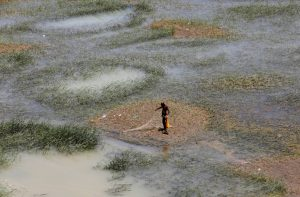 A fisherman stands as he checks his fishing net along the Indus River, Hyderabad, Pakistan, 11 June 2017 (Photo:Reuters/Akhtar Soomro).