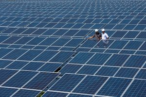 State Electricity Company officials stand between solar cell panels at the largest solar power plant in Indonesia, at Oelpuah village in Kupang, 20 July 2017 (Photo: Reuters/Anatara Foto).